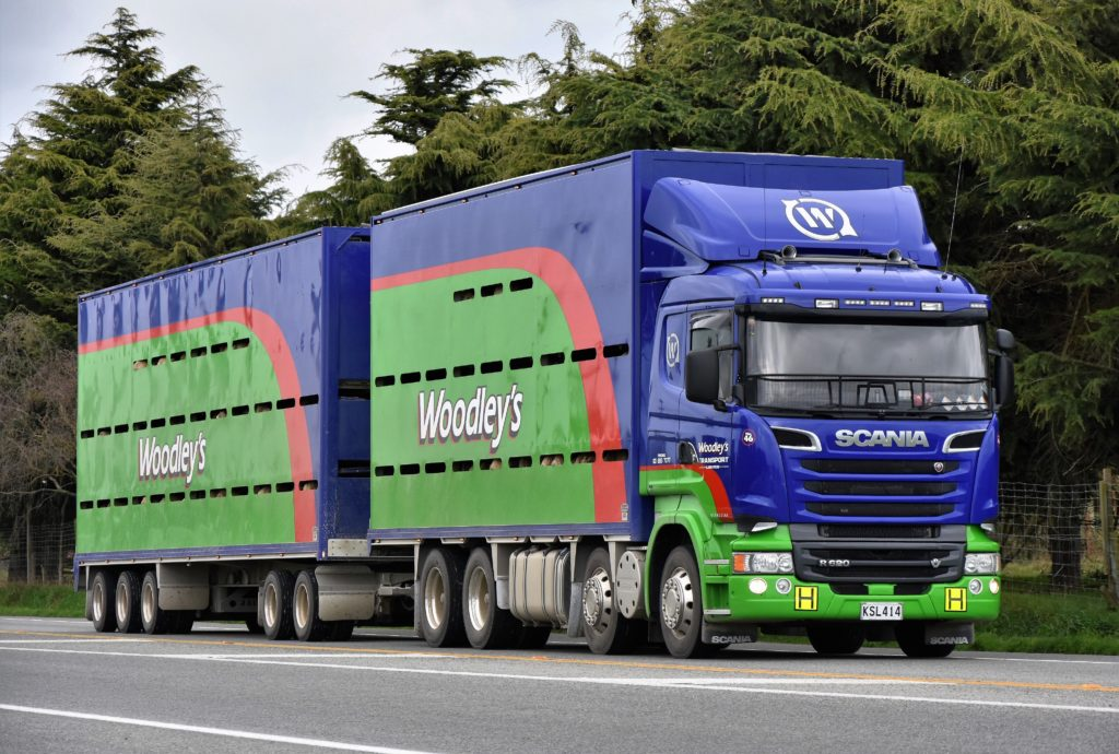 Transport companies NZ